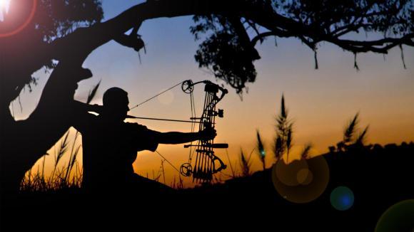 Photo Courtesy: Archery-Forum.com