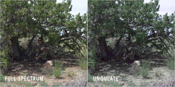 Realtree_tree