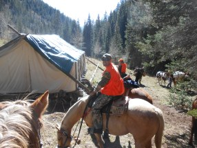 Elk Hunt 2013073