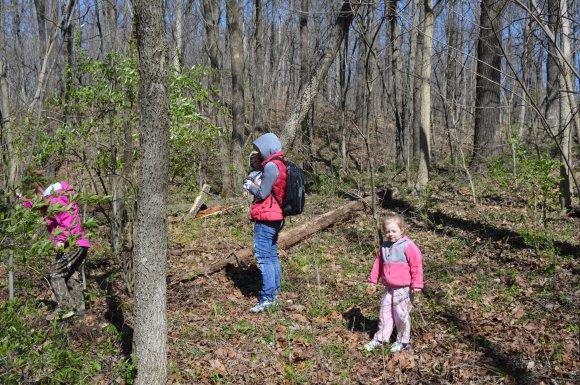 Family Mushroom Hunting