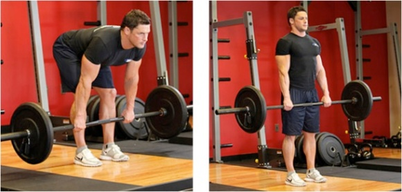 Stiff-Leg-Deadlift[1] deadliftworkouts.com