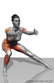 functional exercises continued lateral lunges and side