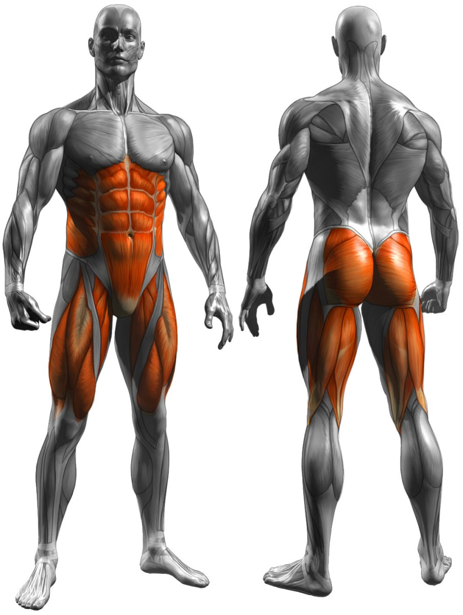 Functional Movements for Stronger Hunting