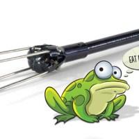 Date Night:  Frog Gigging