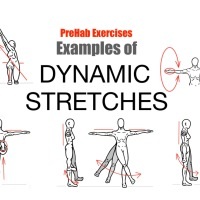 Stretching Is Important Continued:  Dynamic Stretches
