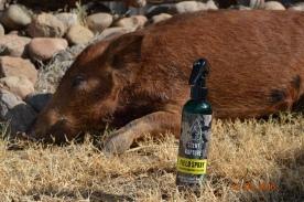 scent-kapture-pig