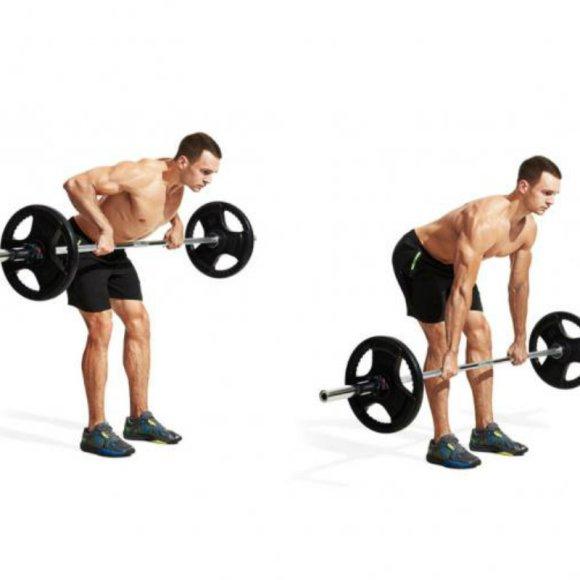 muscleandfitnesscom