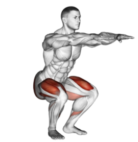 Squats Are Possibly the Best Exercise You Can Do to Up Your Hunting Strength Game (photo courtesy of burnfatinnercircle.com).