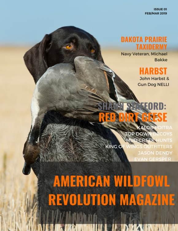 american-wildfowl-1_orig