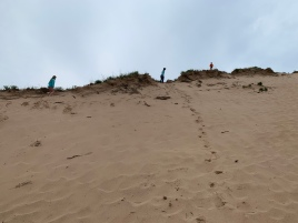 Every Direction Help Dunes and Ridges Just Waiting to Be Climbed.